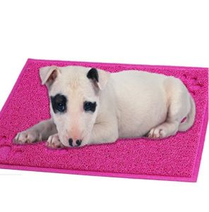 BPA Free Pet Product Pet Toilet Mat pictures & photos