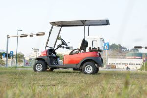 Wholesale 2 Seater Electric Golf Car with Ice Box pictures & photos