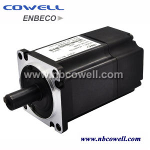 Three-Phase AC Servo Motor with Amplifier/Drive pictures & photos