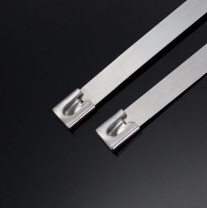Self Locking China Supplier 8mm Width Stainless Steel Cable Ties pictures & photos