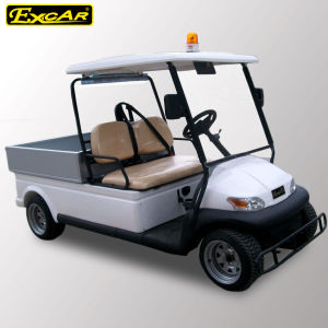 Alarm Light 2 Seater Golf Cart with Small Cargo pictures & photos