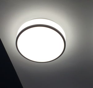 9inch Round Surface Acrylic Ceiling Mount LED Lamp pictures & photos