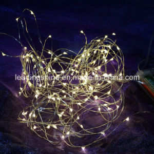 Christmas Light 7 Feet 20 Warm White LEDs Copper String Fairy Lights pictures & photos