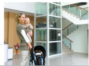 Small Passenger Elevators for Using with Good Price pictures & photos