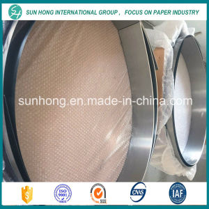 Esg Stainless Steel Strip Doctor Blade in Paper Machine pictures & photos
