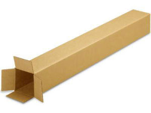 Corrugated Cardboard Paper Box (TS 225-6)