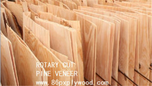 Pine Veneer Short Pine Veneers for Plywood