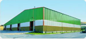 Brazil Steel Warehouse Prefabricated Industrial Steel Buildings for Agricultural and Farm Building Infrastructure (BR00103)