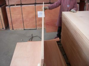 Marine Plywood (yacht) pictures & photos