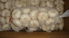 1kg *10 Garlic