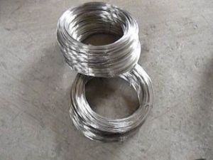Professional China Manufactoring Supplier Stainless Steel Wire pictures & photos