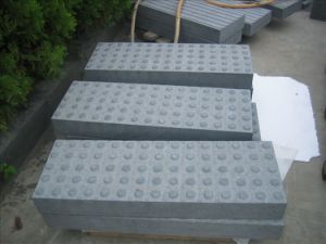 Paving Stone (Blind Surface)