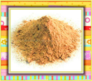 China L-Lyine HCl Suphate Feed Additive From China pictures & photos
