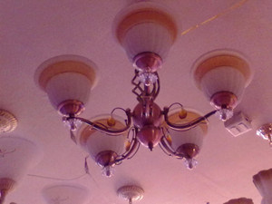 5 Arms Glass LED Gallery Ceiling Light pictures & photos