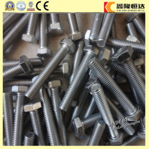High Quality Hex Bolt Made by Xinlonghengda pictures & photos