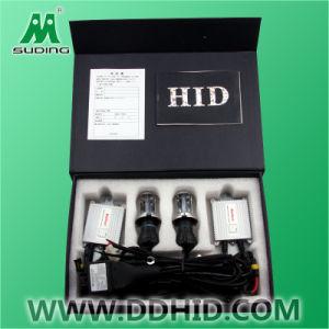 Auto HID Xenon Kits D1R/S/C