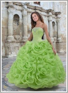 Ball Gown&Quinceanera Dress&Prom Dress&Party Dress (XD4006)