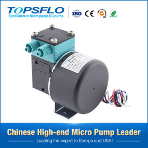 Mini 6V 12V 24V DC Diaphragm Vacuum Pump pictures & photos