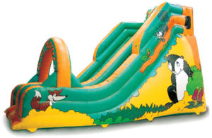 2014 Newest Fun and Fashion Inflatable Castles pictures & photos