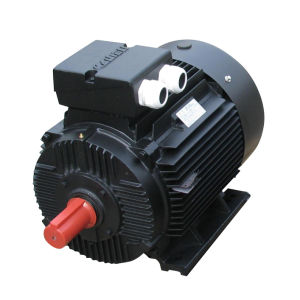 YD Series pole changing multi speed three phase asynchronous electric motor(BLACK) pictures & photos