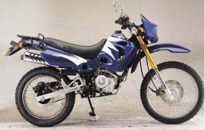 4 Stroke off Road Gas Bike Gy SUV Dirt Bike