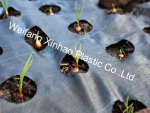 Weed Mat with Holes/Ground Cover/Landscape Fabric/Garden Cover pictures & photos