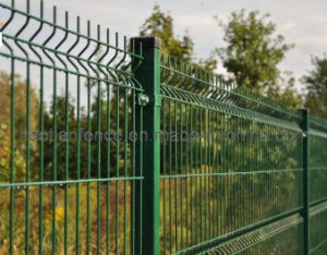 Welded Wire Fencing pictures & photos