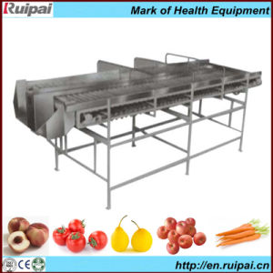 Fruit&Vegetable Checking Machine with CE pictures & photos