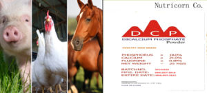 Animal Feed Additives DCP MDCP Mcp pictures & photos