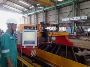 Metal Sheet Gantry Type CNC Plasma and Flame Bevel Cutting Machines pictures & photos