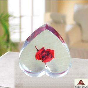 Lucite Gift (SR5302)