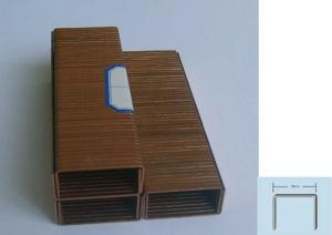 A Carton Staple Series pictures & photos