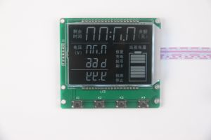 COB/Cog Monochrome LCD Screen pictures & photos