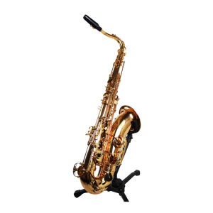 Hot Selling Tenor Saxophone (TS-100G) pictures & photos