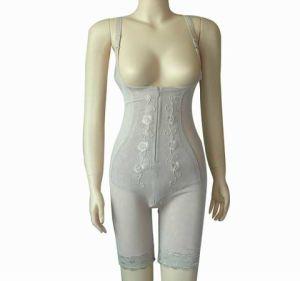 Shaper Underwear (TC608)