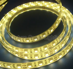 Flexible LED Strip Light 300LED 5050SMD 14.4W/M pictures & photos