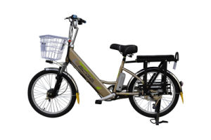 Lithium Battery Bike (TDN-202Z)