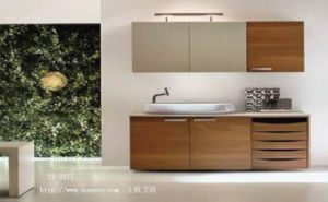 Bathroom Cabinet & Bathroom Vanity (SY-2011)