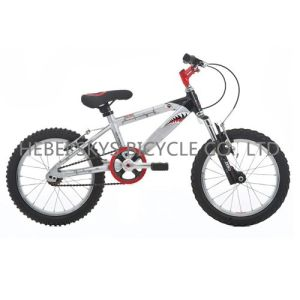 Beatiful Kids Bicycle