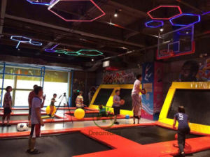 Indoor Trampoline Park Adult Indoor Bungee Jumping Trampoline (DLJ058) pictures & photos