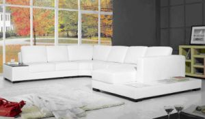 Modern Leather Light Sofa (C035)