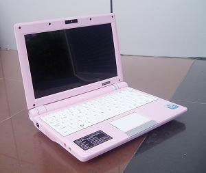 15 Inch Laptop (Pink 202)