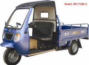 Fashionable 175CC Cargo Tricycle (DF175ZH-2)