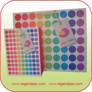 Apparel Paper Shopping Bag (LPPS-004)