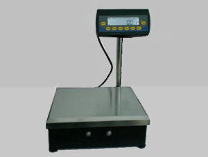 Electronic Industrial Balance (ES-C Series )