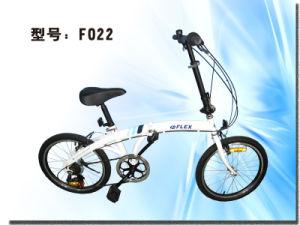 Carbon Fiber Bicycle (F022)