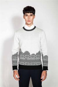 Crew Neck Jacquard Knit Jumper Men Sweater pictures & photos
