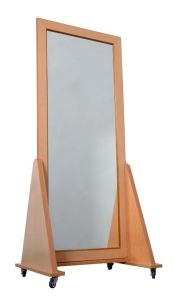 Posture Correction Mirror (P-JZJ-A)
