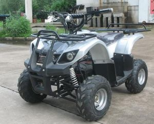 Electric ATV (XY-E500)