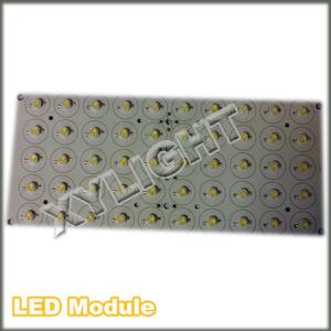 LED Module (XY-50*1W)